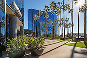 Glass Business Buildings in La Jolla San Diego