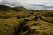 Being full of volcanic soil, the landscape of Iceland is, in many places, covered by a soft layer of moss, almost like a carpet