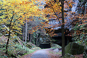 Uttewalder Grund, Sächsische Schweiz, Elbsandsteingebirge, Sachsen, Deutschland | Uttewalder Grund valley, Saxon Switzerland, Saxony, Germany
