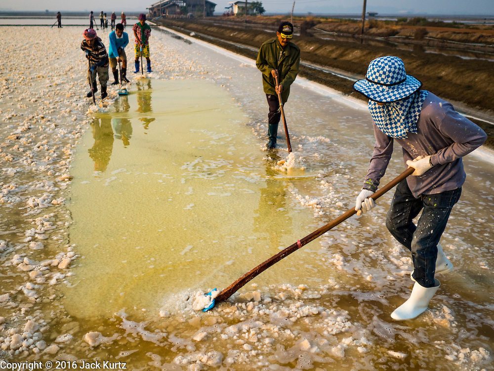 10 FEBRUARY 2016 - BAN LAEM, PHETCHABURI, THAILAND: Workers rake up salt in a salt field at the beginning of the harvest in Phetchaburi province, Thailand. The salt harvest in Thailand usually starts in February and continues through May. Salt is harvested in many of the provinces along the coast, but the salt fields in Phetchaburi province are considered the most productive. The salt fields are flooded with sea water, which evaporates off leaving salt behind. Salt production relies on dry weather and producers are hoping the current drought will mean a longer harvest season for them.      PHOTO BY JACK KURTZ