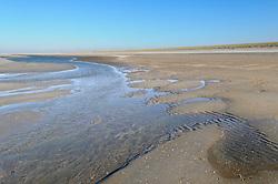 Monster, Westland, Zuid Holland, Nederland, Netherlands, Zandmotor Noordzeekust