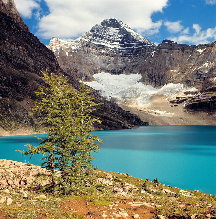 Lake McArthur is the exact color of turquoise, surrounded by the Canadian Rockies, and located in Yoho National Park, British Columbia, Canada.