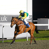 Mcbirney and Philip Prince winning the 7.30 race