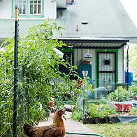 Organic urban farmers, Jami Andersen and Russell Kirchner.