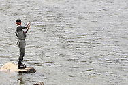 Robert Albers, of Bozeman, Montana, fly-fishes the Madison River.