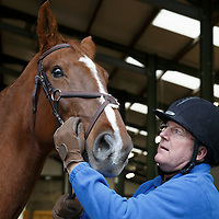 Former St Johnstone player and now Associate Director Roddy Grant and horse 'Troni' pictured at St Johnstone owner Geoff Brown's Kinfauns Stables Riding for the Disabled centre...09.11.15<br /> see story by Robert Thomson<br /> Picture by Graeme Hart.<br /> Copyright Perthshire Picture Agency<br /> Tel: 01738 623350  Mobile: 07990 594431