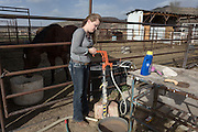 CREDIT: Steven St. John for The Wall Street Journal<br /> &quot;ANIMAS<br /> <br /> Brian Dils 17-year-old daughter Saige turns on water for the horses on the family land in Aztec New Mexico on Tuesday March 23, 2016.