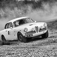 Car 14 Rob van der Leeuw / Peter van Egmond