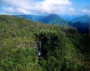 Waterfall, Alakai Swamp, Kauai, Hawaii