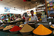A man sells Indian spices at the local market in Jodhpur, the blue city of Rajasthan, India..Photo by Suzanne Lee