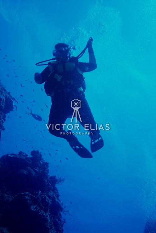 Diver on reef descending. Cozumel, Quintana Roo. Mexico.