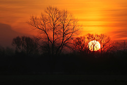 01 December 2016. Favières, France.<br /> Here comes the sun. Sunrise beyond a stand of trees.<br /> Photo; Charlie Varley/varleypix.com