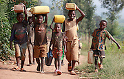 Children carrying jerry cans of water up the hill to Gasororo village. Juru Sector. Bugesera district. Rwanda...© Zute Lightfoot / Water Aid.