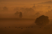 Canada geese fly in front of the Pennsylvania State Memorial as fog blankets the Gettysburg battlefield during sunrise, Sunday, Aug. 5, 2018, in Gettysburg.