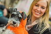 Rusty in pumkin coat and owner - A charity Halloween Dog Walk and Fancy Dress Show organised by All Dogs Matter at the Spaniards Inn, Hampstead. London 29 Oct 2017.