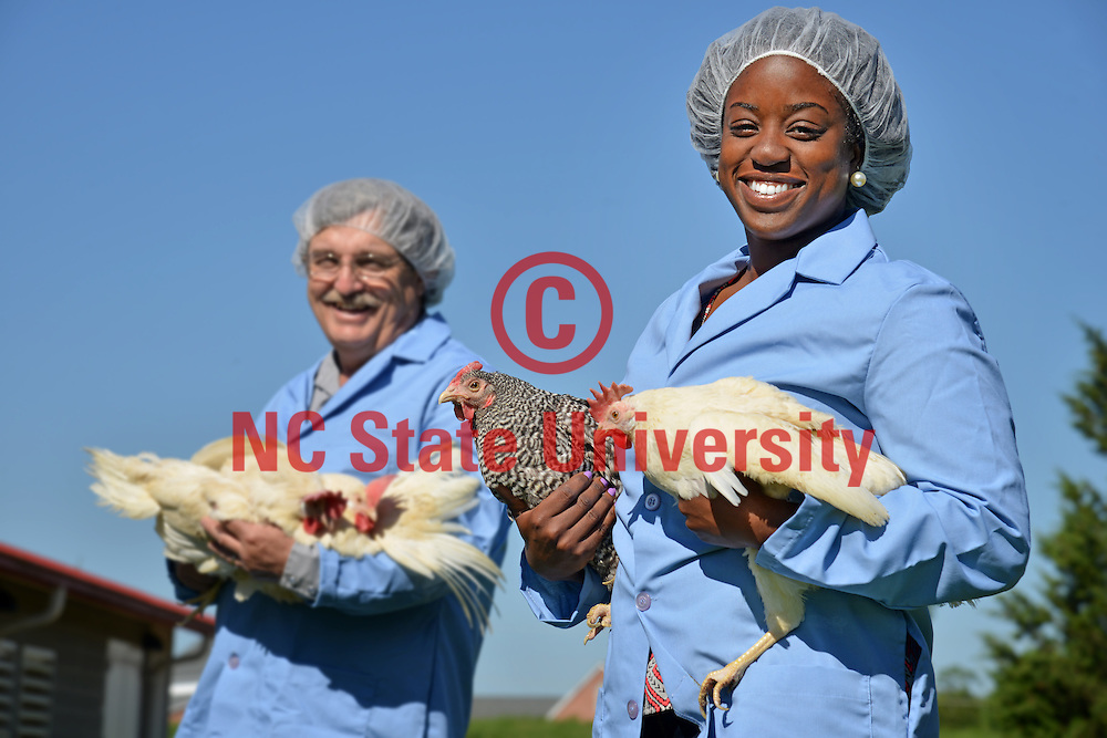 Prestage Dept. of Poultry Science student (right) and extension specialist Dr. Ken Anderson (left).