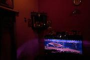 Fish tank in Mr. Johnson's home, Sea Street. Colombo.