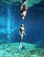 Mermaid Carli Dofka nears her reflection on the surface at Weeki Wachee Springs near Tampa, Florida.  The mermaid show is a living remnant of Florida's past.
