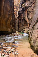 The Virgin River flowing through the Zion canyon narrows, Zion National Park Utah USA
