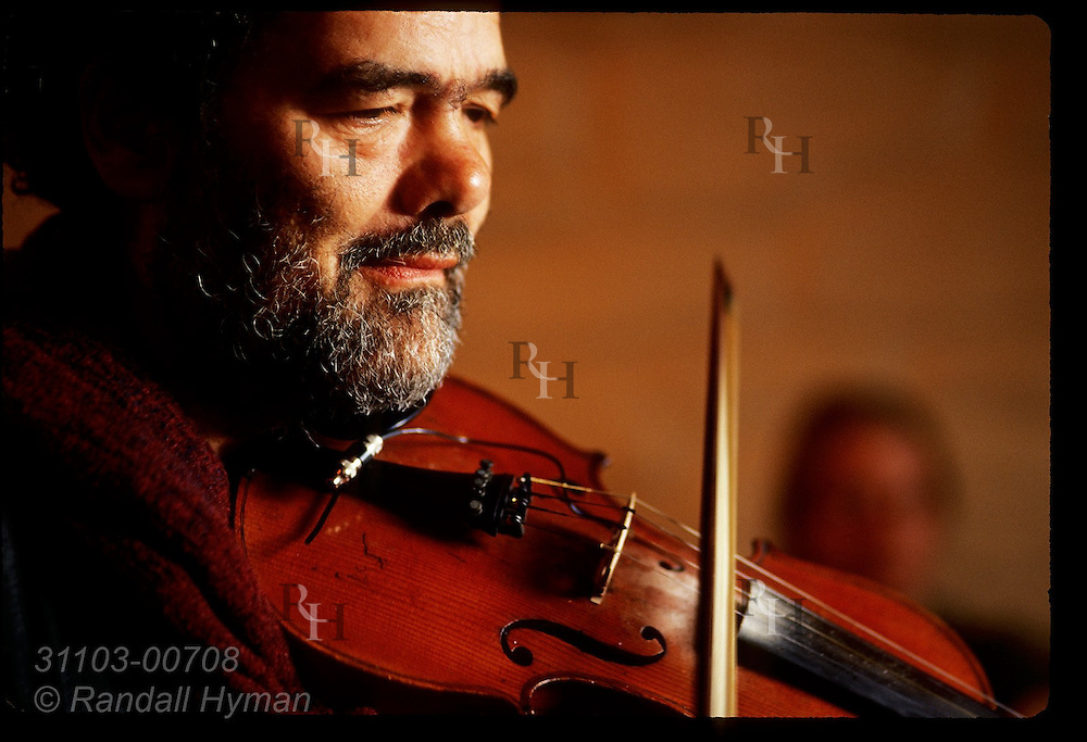 Portrait of musician Mike Venner playing fiddle during a pub session at Barr Na Sraide in town of Dingle, Ireland.