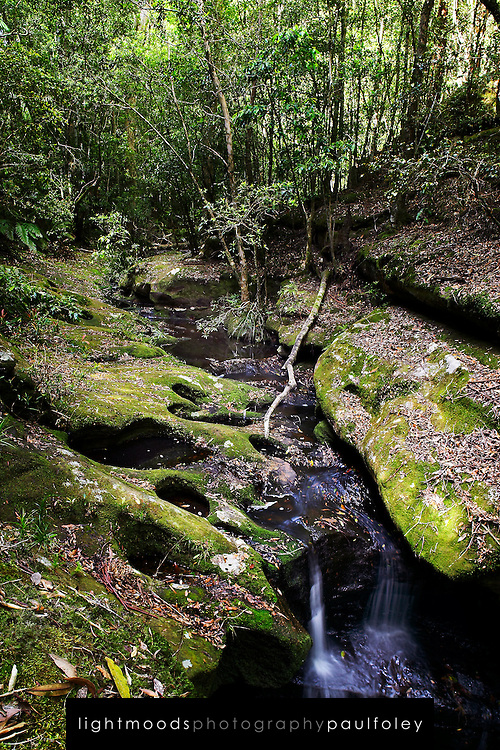 Mountain Stream, Watagan Mountains, Australia