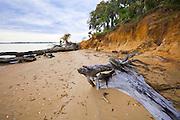 1300-1005 ~ Copyright: George H.H. Huey ~ Eroding cliff and beach on Cumberland Island.  Cumberland Island National Seashore, Georgia.