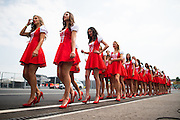 July 21-24, 2016 - Hungarian GP, Grid Girls
