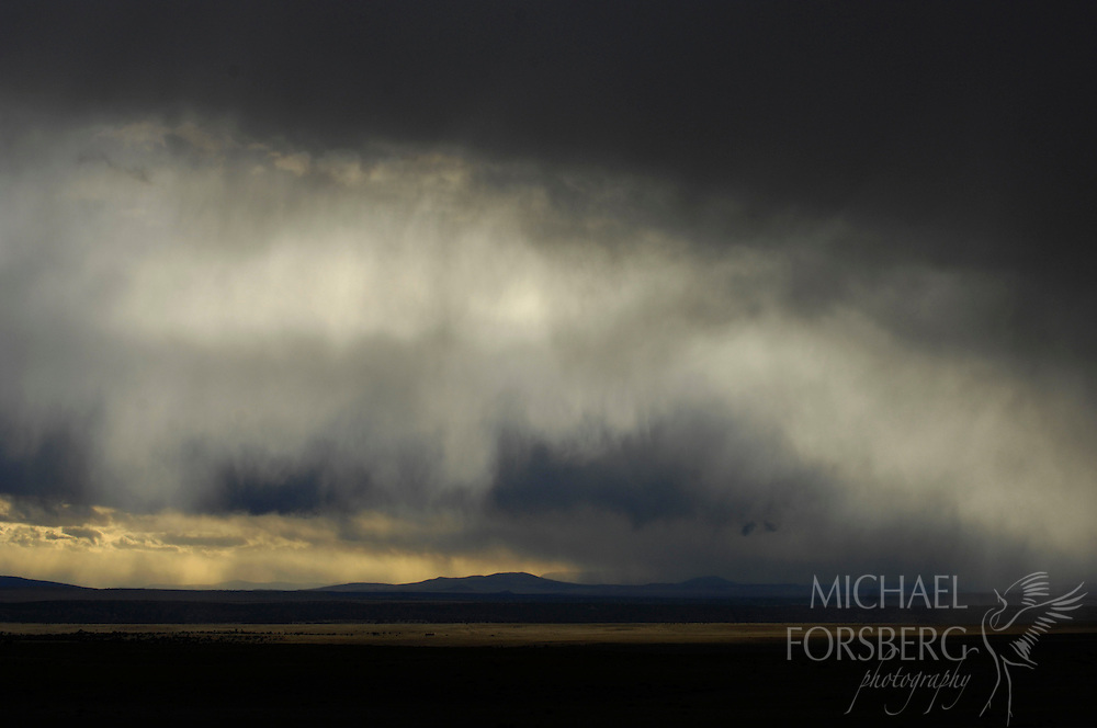 A snow squall rolls in over the spine of the Cimarron Range as evening settles across the Kiowa National Grassland on New Mexico's High Plains.  Harding County, New Mexico.