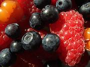 Berries rich in vitamins.