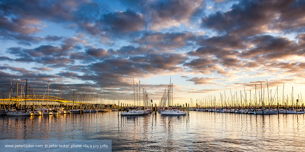 Westhaven, Auckland, New Zealand.