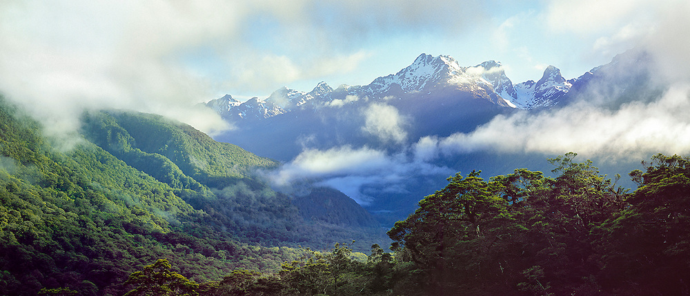 Clearing morning cloud, Hollyford Valley | bill ashcroft