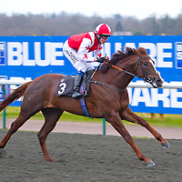 Performing Pocket and Jamie Spencer winning the 3.20 race