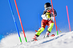 PEMBLE Mel, LW9-2, CAN, Slalom at the WPAS_2019 Alpine Skiing World Cup, La Molina, Spain