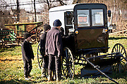 Amish boys inspect a horse buggy during the Annual Mud Sale to support the Fire Department  in Gordonville, PA.
