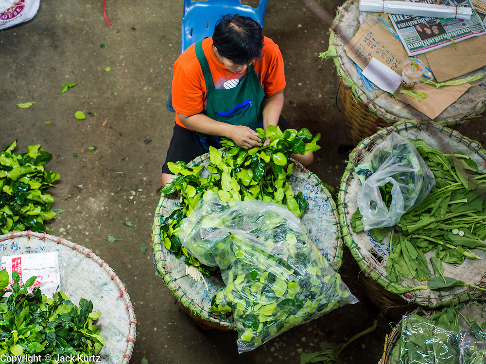 """23 AUGUST 2013 - BANGKOK, THAILAND:    A vendor sorts Kaffir lime leaves (Citrus hystrix DC., Rutaceae), also known as kieffer lime, makrut, or magrood in Pak Khlong Talad in Bangkok. Thailand entered a """"technical"""" recession this month after the economy shrank by 0.3% in the second quarter of the year. The 0.3% contraction in gross domestic product between April and June followed a previous fall of 1.7% during the first quarter of 2013. The contraction is being blamed on a drop in demand for exports, a drop in domestic demand and a loss of consumer confidence. At the same time, the value of the Thai Baht against the US Dollar has dropped significantly, from a high of about 28Baht to $1 in April to 32THB to 1USD in August.    PHOTO BY JACK KURTZ"""