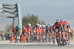 October 14, 2017 - Izmir, Turkey - The peloton during the fifth stage - the 166 km Vestel Selcuk to Izmir, the second last stage of the 53rd Presidential Cycling Tour of Turkey 2017..On Saturday, 14 October 2017, in Izmir, Turkey  (Credit Image: © Artur Widak/NurPhoto via ZUMA Press)