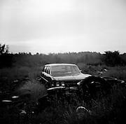 Wesport Island.Maine, USA....