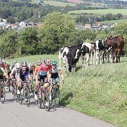 04-09-2016: Wielrennen: Ladies Tour: Valkenburg<br /> VALKENBURG (NED) wielrennen