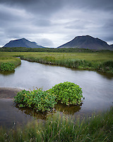 A small stream and pond by Barnaborgarhraun, West Iceland. Mountains Kolbeinsstaðafjall (left) and Fagraskógarfjall (right) in background.
