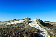 Beach path through dunes, Philbin Beach, Aquinnah, Martha's Vineyard, Massachusetts, USA.