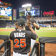 NEW YORK, NEW YORK - July 05: Giancarlo Stanton #27 of the Miami Marlins celebrates with Barry Bonds #25 of the Miami Marlins after hitting a three run homer in the eighth inning during the Miami Marlins Vs New York Mets regular season MLB game at Citi Field on July 05, 2016 in New York City. (Photo by Tim Clayton/Corbis via Getty Images)