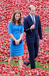 Catherine Duchess of Cambridge, Prince William, General Sir Richard Dannatt and Prince Harry, visit the 'Blood Swept Lands and Seas of Red' at the Tower of London. UK. 05/08/2014<br />BYLINE MUST READ : GOTCHAIMAGES.COM<br /><br />Copyright by © Gotcha Images Ltd. All rights reserved.<br />Usage of this image is conditional upon the acceptance <br />of Gotcha Images Ltd, terms and conditions available at<br />www.gotchaimages.com