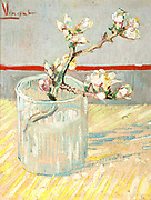 Sprig of Almond Blossom in a Glass', 1888. Oil on canvas. Vincent Willem van Gogh (1853-1890) Dutch Post-Impressionist painter.