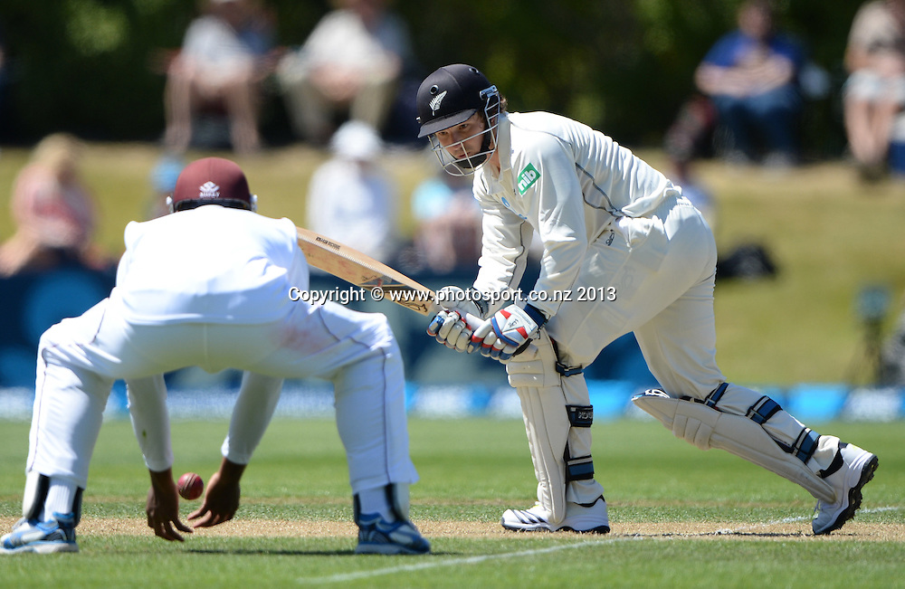 Kieron Powell fielding in close as BJ Watling plays a shot on Day 2 of the 1st cricket test match of the ANZ Test Series. New Zealand Black Caps v West Indies at University Oval in Dunedin. Wednesday 4 December 2013. Photo: Andrew Cornaga/www.Photosport.co.nz