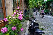 France, Paris (75) Passage Lhomme