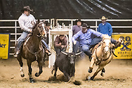 Steer wrestler Sam Olson makes his run during slack at the Bismarck Rodeo on Saturday, Feb. 3, 2018. This photo and more from most runs are available at Bobwire-S.com.