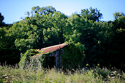 UK ENGLAND WILTSHIRE 26JUN08 - A derelict shack near the river Kennet near Stichcoombe in rural Wiltshire, western England...jre/Photo by Jiri Rezac / WWF UK..© Jiri Rezac 2008..Contact: +44 (0) 7050 110 417.Mobile:  +44 (0) 7801 337 683.Office:  +44 (0) 20 8968 9635..Email:   jiri@jirirezac.com.Web:     www.jirirezac.com..© All images Jiri Rezac 2008 - All rights reserved.