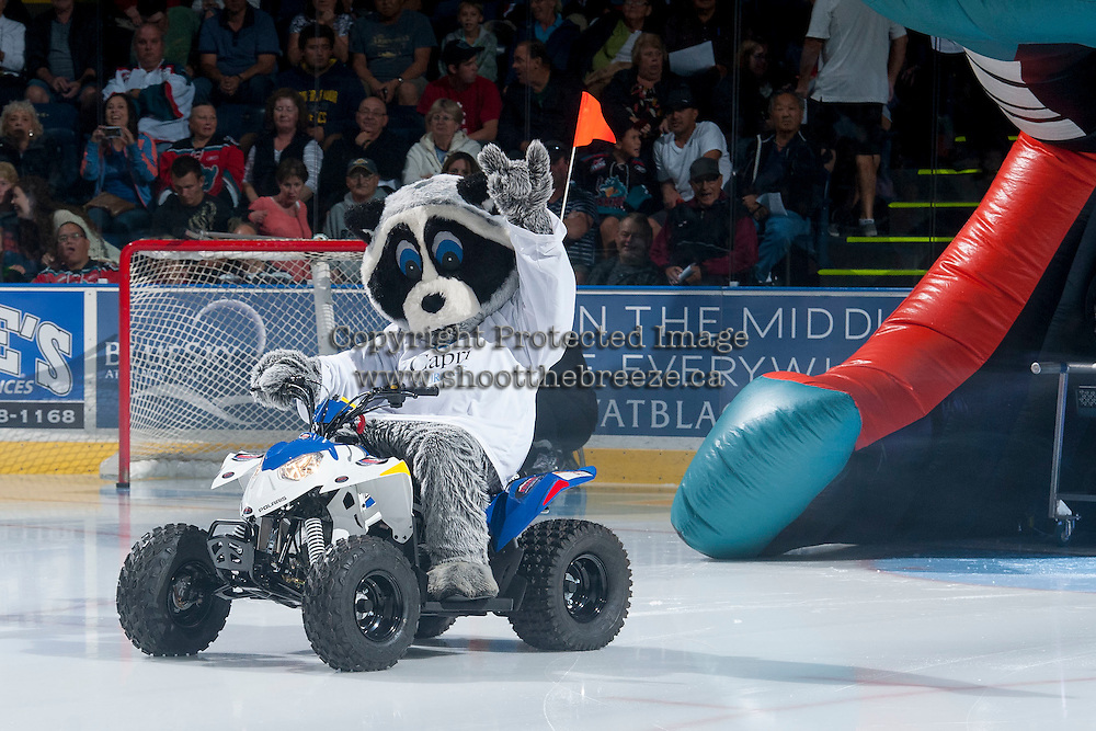 KELOWNA, CANADA - SEPTEMBER 20: Rocky Racoon, the mascot of the Kelowna Rockets enters the ice at the start of the regular season home opener against the Kamloops Blazers on September 20, 2014 at Prospera Place in Kelowna, British Columbia, Canada.   (Photo by Marissa Baecker/Shoot the Breeze)  *** Local Caption *** Rocky Racoon;