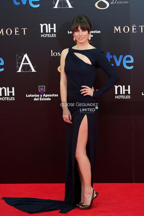 Blanca Suarez arrives to Goya Cinema Awards 2013 ceremony, at Auditorium Hotel on February 17, 2013 in Madrid, Spain