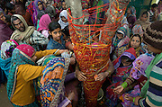 Revellers celebrate Holi in Vrindvan,performing rituals around a sacred tree.